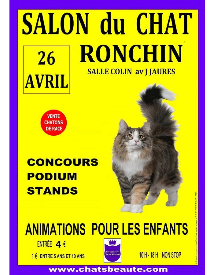 Salon international du chat de race koikanou - Salon de chat francais ...